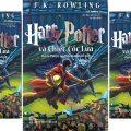 Harry Porter và chiếc cốc lửa